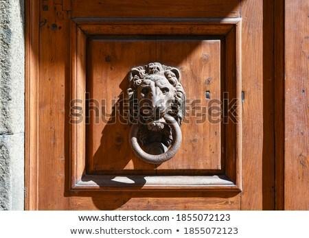 Ancient italian lion shaped door knocker Stock photo © marylooo