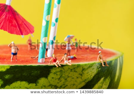 miniature men in swimsuit on a watermelon Stock photo © nito