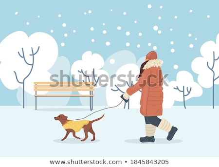 Person Activity with Dog in Winter Time Vector Stock photo © robuart