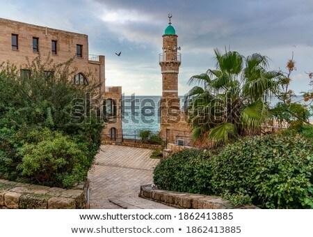 al bahr mosque stock photo © eldadcarin