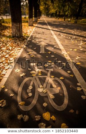 Bicikli vízszintes kép kettő út út Stock fotó © pancaketom