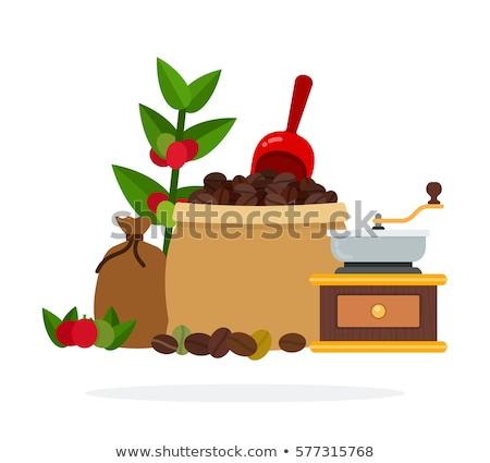 Coffee beans in an open box Stock photo © CaptureLight