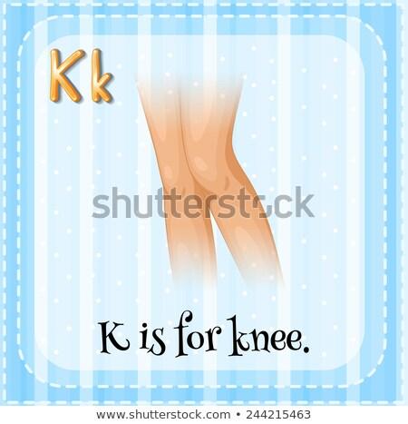 Flashcard letter K is for knee Stock photo © bluering