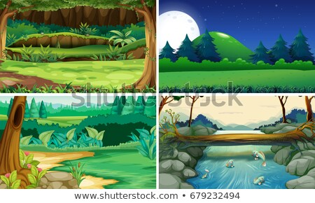 Four night scenes of the forest and park Stock photo © colematt