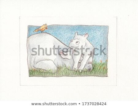 Cute rhino frame scene Stock photo © bluering
