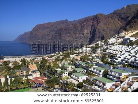 Casas tenerife branco espanhol ilha árvore Foto stock © compuinfoto