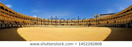 aréna · kinyitott · kilátás · auditórium · egy · híres - stock fotó © hofmeester