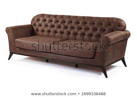 Moderno couro sofá isolado branco urbano Foto stock © kokimk