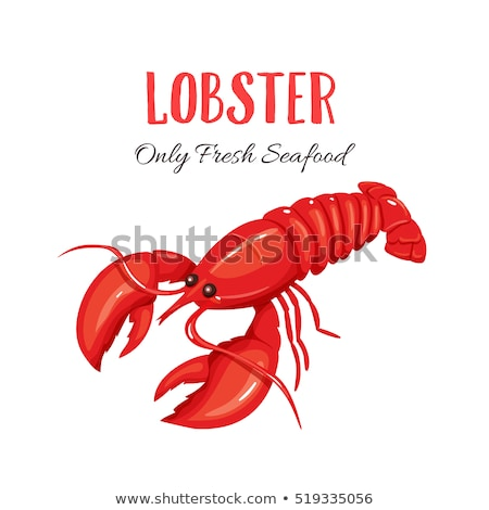 red lobster isolated illustration stock photo © conceptcafe
