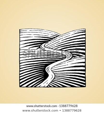 tájkép · dombok · folyó · vektor · terv · illusztráció - stock fotó © cidepix