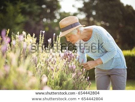 Senior donna giardino fiorito fiore natura Foto d'archivio © wavebreak_media