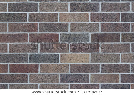 Brick walls in two shades of brown Stock photo © colematt