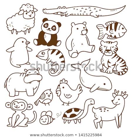 Dier schets cute schapen illustratie achtergrond Stockfoto © colematt