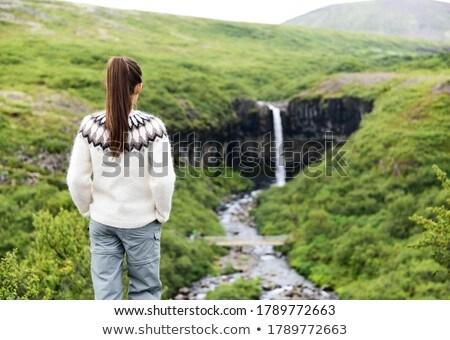 Izland nő kirándulás néz vízesés női Stock fotó © Maridav