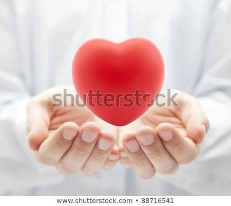 Orvosi orvos tart szív egészségbiztosítás egészség Stock fotó © EwaStudio