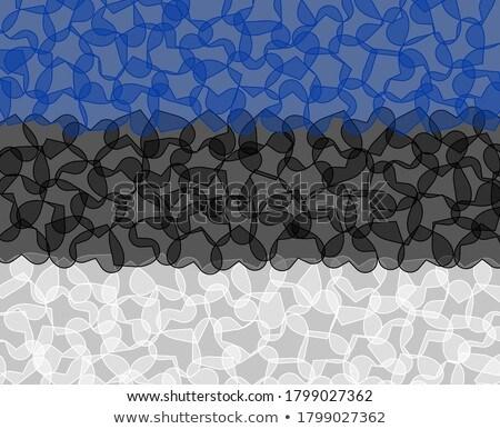 Estland vlag shirt zakenman tonen man Stockfoto © fuzzbones0