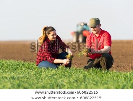 農家 トラクター フィールド 実例 男 地球 ストックフォト © adrenalina