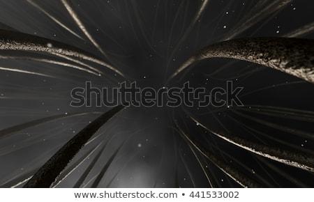 Microscopisch haren 3d render Stockfoto © albund