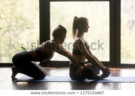 Female teacher correcting student work Stock photo © IS2