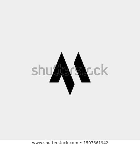 Szimbólum ikon logotípus alkotóelem felirat vektor Stock fotó © blaskorizov