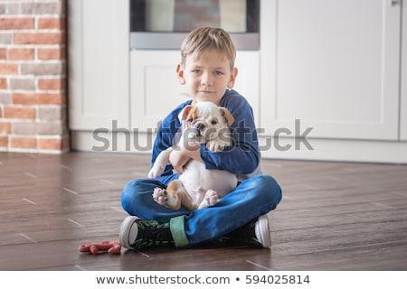 かわいい · 子犬 · 画像 · 1 · 月 · 古い - ストックフォト © feedough