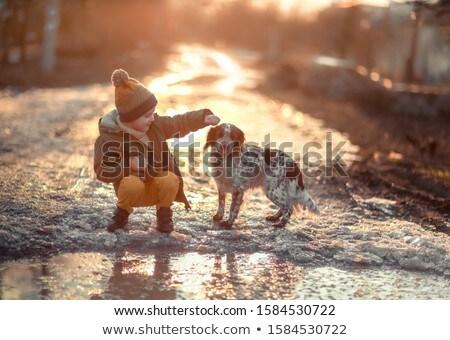Fiú kutya utca pocsolya naplemente család Stock fotó © ElenaBatkova