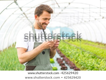 Stock photo: Man on the phone in the garden