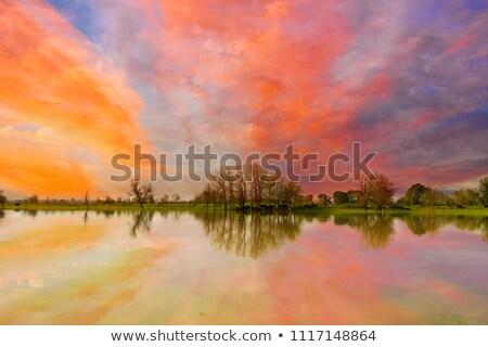 Sunset over Sauvie Island Stock photo © davidgn