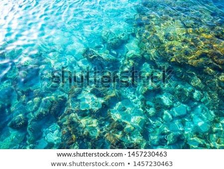Ibiza Portinatx Arenal Gran beach in Balearics Stock photo © lunamarina
