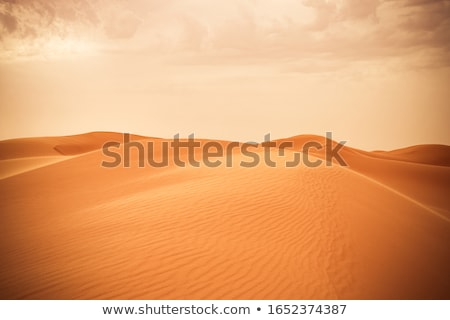 Desert with sand dunes and clouds on blue sky Stock photo © vapi