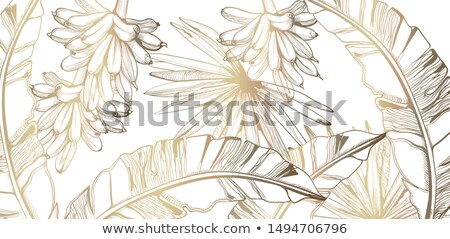 Palm leaves pattern golden tropic vector line art. Summer poster exotic decorations Stock photo © frimufilms
