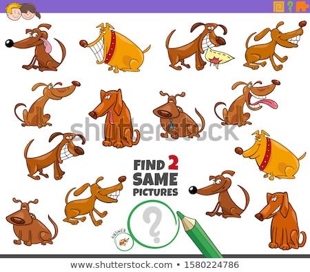 Odnaleźć dwa kozy gry dzieci Zdjęcia stock © izakowski