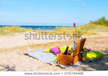 Picknickdeken kussen mand gras mooie meer Stockfoto © jsnover
