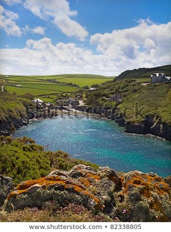 cove at port quin cornwall uk stock photo © fisfra