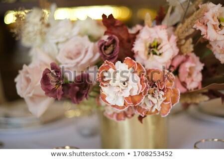 Gedroogd bloemen witte achtergrond kunst moderne Stockfoto © premiere