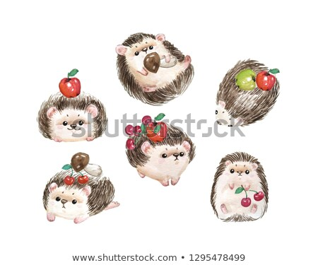 Cartoon Character Hedgehog Stock photo © RAStudio