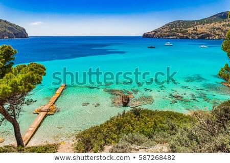 kamp · majorca · eiland · Spanje · landschap · achtergrond - stockfoto © lunamarina