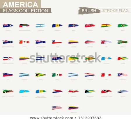 grunge · Colombia · zászló · vidék · hivatalos · színek - stock fotó © hypnocreative