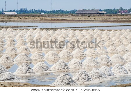 Pile white salt and seawater Stock photo © deyangeorgiev