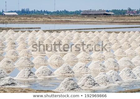 witte · zout · zeewater · textuur · zee - stockfoto © deyangeorgiev