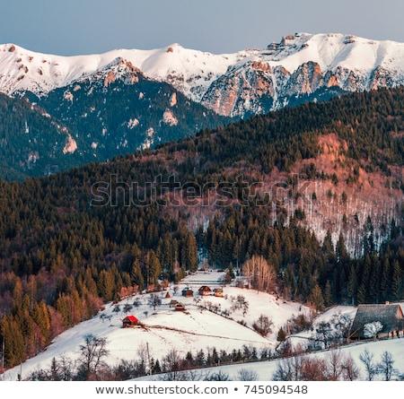 Hagyományos román falu alkonyat égbolt ház Stock fotó © joyr