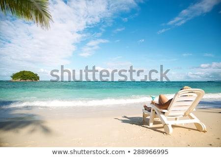 sunbed at the coast Stock photo © ivonnewierink