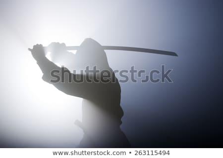 Nindzsa kard illusztráció vadászrepülő férfi biztonság Stock fotó © vectomart
