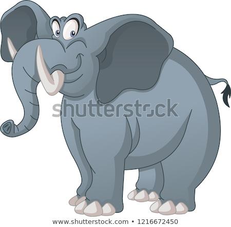 cute · cartoon · elefante · creativa · diseno · arte - foto stock © indiwarm
