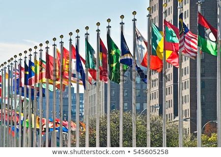 国連 フラグ グランジ 画像 詳しい ストックフォト © stevanovicigor