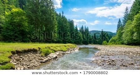 Belle bleu vert eau rive roches Photo stock © chrascina
