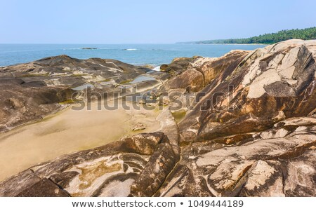 Large boulders and palm trees along a beach Stock photo © chrascina