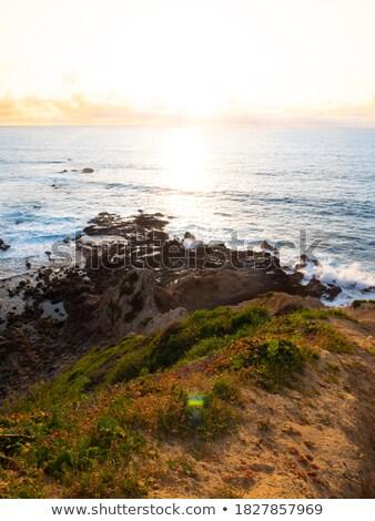 Stromy ocean plaży tropikalnych niebo Zdjęcia stock © chrascina