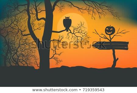 halloween · poszter · ördög · copy · space · szárnyak · denevér - stock fotó © beholdereye
