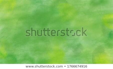 Abstract hand painted acrylic background Stock photo © Taigi
